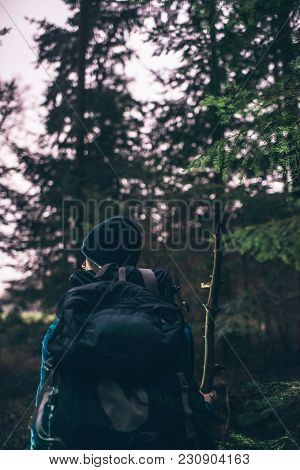 Backpacker Hiking In Dark Winter Forest At Dusk. Rear View.