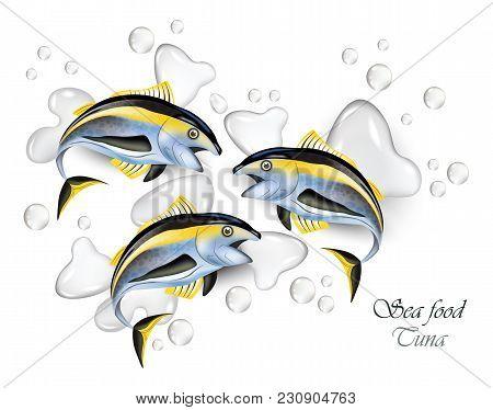 Fresh Tuna Fish Vector Realistic. Water Splash Background
