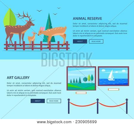 Animal Reserve And Art Gallery Template Vector Web Banner In Graphic Design With Deers Family Outdoo