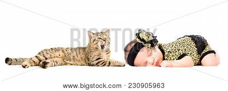 Portrait Of Cute Newborn Girl And Licks Cat Scottish Straight, Isolated On White Background