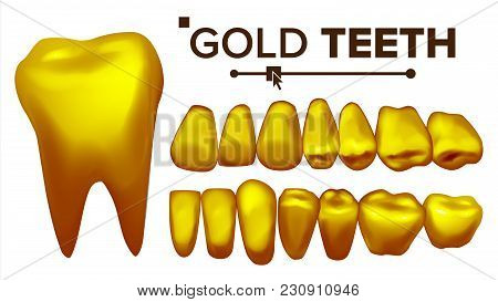 Gold Tooth Vector. Metal Golden Human Teeth. Old Pirate. Realistic Isolated Illustration