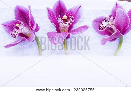 Spa And Wellness Setting With Orchid And Towel On Wooden Dark Background Closeup