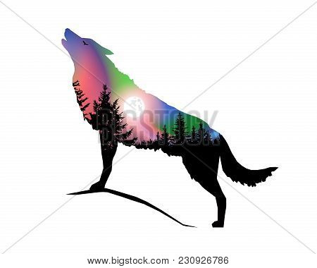 Silhouette Of Howling Wolf With Coniferous Trees On The Background Of Colorful Sky. Moonlight. North