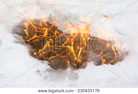 Flame Of Fire On White Snow In Winter .
