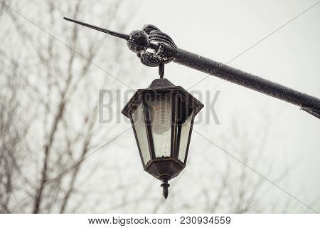 Street Vintage Light. Energy Saving Light Bulb. Energy Saving. Cheap Lighting.