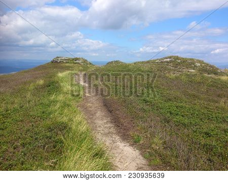 A Narrow Path, Through A Clearing, Leads To The Top Of The Mountain