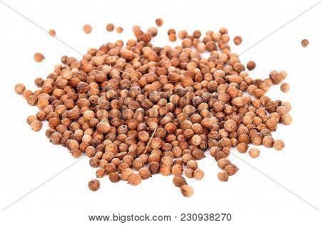 Coriander Seeds On White Background Spice, Closeup, Raw, Aromatic,