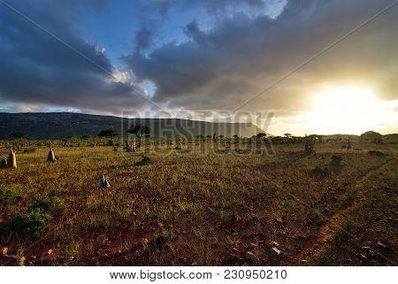 Beautiful Landscape Of The Diksam Plateau During Sunset At Exotic Island Socotra, Yemen, Africa