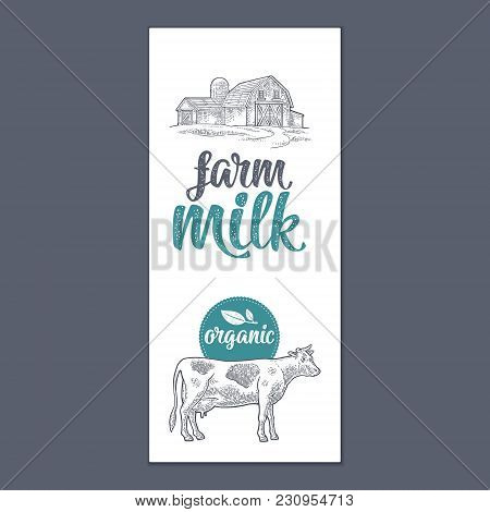 Template Poster Or Label With Cow And Hangar. Farm Milk Calligraphic Handwriting Lettering. Vintage