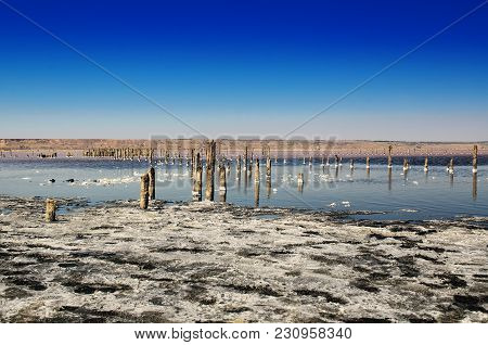 Beautiful Salt Lake With Blue And Pink Water And Wooden Posts, Natural Landscape Amazing Background