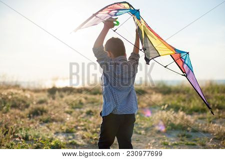 dreamy little boy with big kite in his hands over his head poster