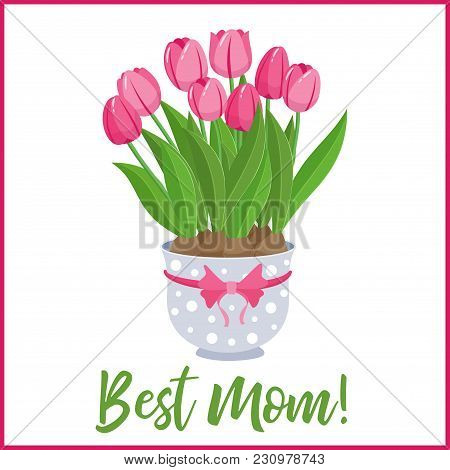 Happy Mothers Day Lettering Greeting Banner With Spring Lowers. Pink Tulips In Blue Polka Dot Pot Wi