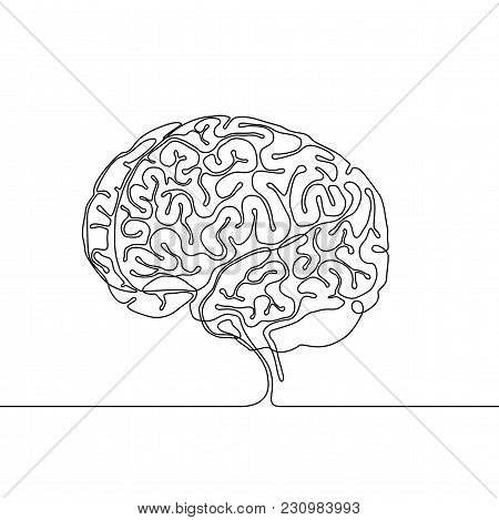 Continuous Line Drawing Of A Human Brain With Gyri And Sulci, Multipurpose Single Line Concept Or Ic