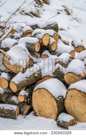 A Pile Of Large Wooden Logs, Cut And Covered In Snow And Frost
