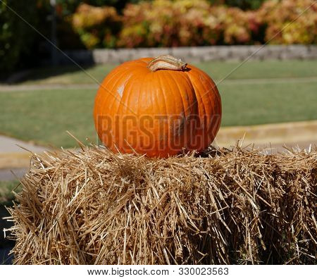 One Orange Pumpkin On Top Of Hay Bales At A Farmer's Market