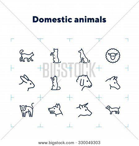 Domestic Animals Icons. Set Of Line Icons On White Background. Dog, Sheep, Rabbit, Cat, Cow, Horse.