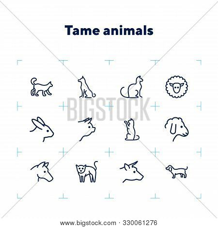 Tame Animals Line Icon Set. Set Of Line Icons On White Background. Beef, Horse, Cat. Household Conce