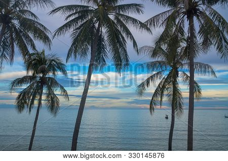 A Postcard Picturesque Vibrant Tropical White Coloured Cumulus Cloudy Coastal Seascape With Palm Tre