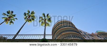 Palm Trees And Multistory Building Landscape With A Blue Sky Backdrop. Cityscape Background Panorama