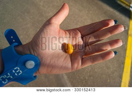 Orange Palm Fruits - Canary Date Palm. Date On A Female Palm. Hand In A Blue Bracelet From The Water