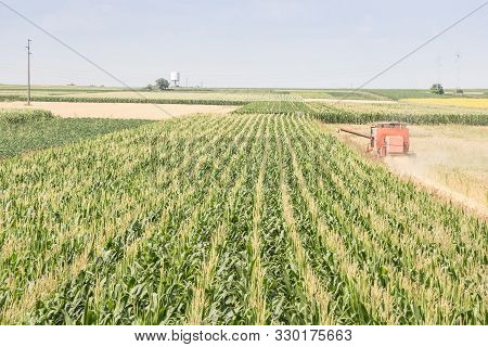 Combine Harvester, A Threshing Machine, Collecting Corn On Cornfileds, With Typical Rows, On Plains