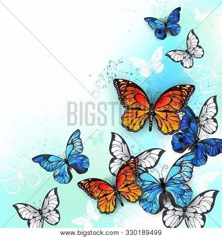 Flock Of Blue, Orange And White Realistic Butterflies On White Background Shaded With Green And Turq