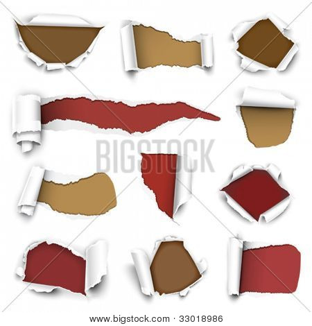 ?ollection of torn paper. Vector illustration
