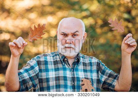 Happy Senior Man Looking At Camera. Senior Man Walking In The Park In Autumn. Senior Man Strolling I