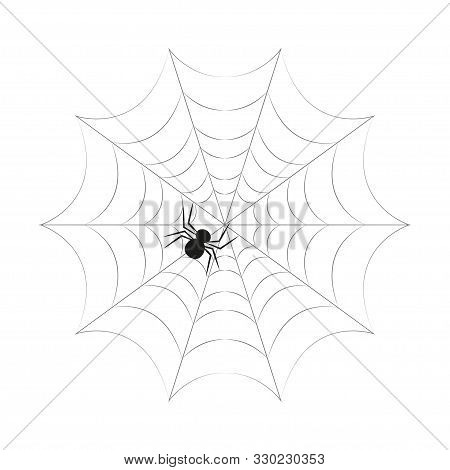 Spider On The Web In Flat Style, Vector