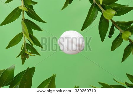 Swirled Silky White Dollop Of Face Cream Body Lotion On Green Background With Fresh Plants Leaves. S