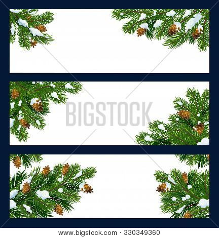 Christmas Tree Vector Banners With Green Branches, Snow And Pinecones. Forest Pine, Fir And Spruce T