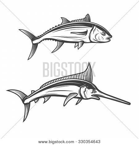 Tuna And Swordfish Isolated Monochrome Icons. Vector Ocean Fish Species, Fishing Club Or Fishery Sto