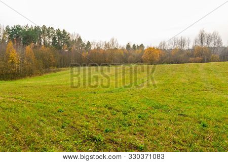 Beautiful Field With Autumn Trees Around.landscape. Autumn Meadow, Colorful Yellow Trees . Landscape