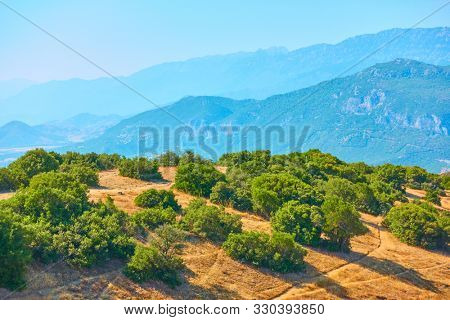 Bushes on the rock in Meteora and mountains in the background, Thessaly, Greece - Greek landscape
