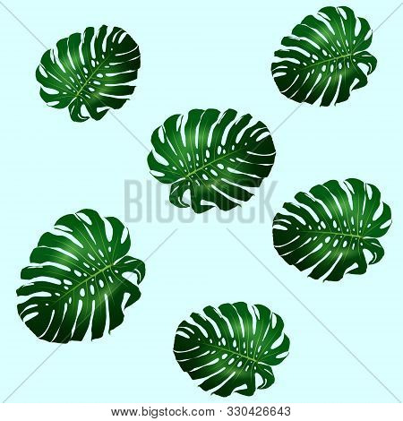 Seamless Pattern Of Beautiful Big Green Leaves Monstera Plant, Monstera On Blue Background, Vector I
