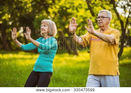 Senior Couple Is Enjoying Tai Chi Exercise In Park.
