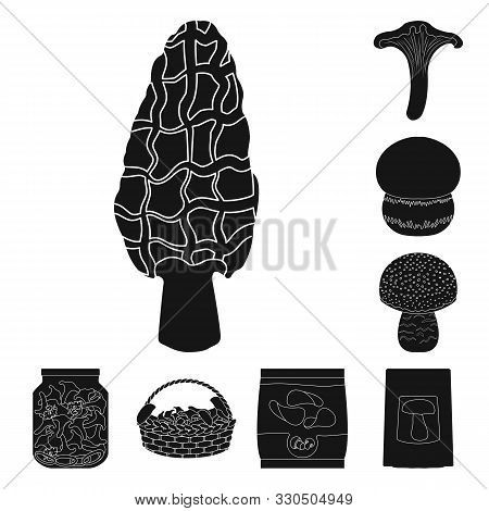 Vector Design Of Variety And Ingredient Symbol. Collection Of Variety And Food Stock Vector Illustra