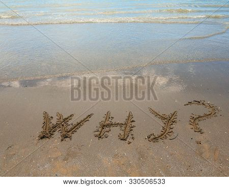 Big Text Why On The Sandy Beach By The Sea