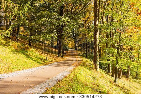 Autumn Forest Scenery With Road Of Fall Leaves & Warm Light Illumining The Gold Foliage. Footpath In