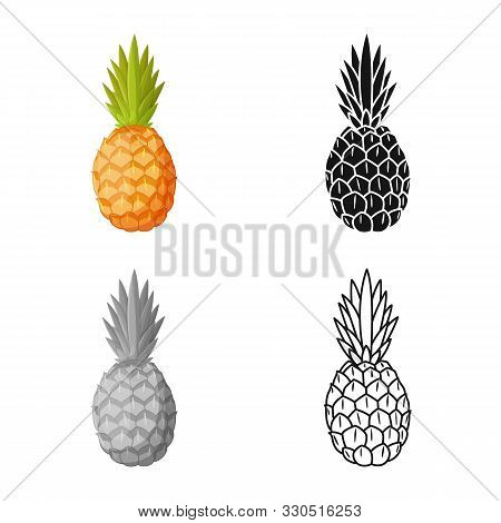 Vector Design Of Ananas And Vitamin Symbol. Graphic Of Ananas And Tropical Vector Icon For Stock.