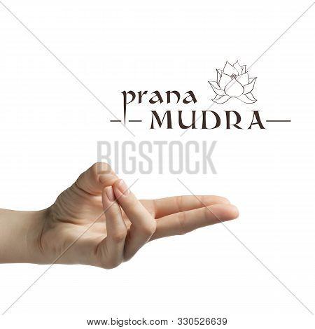 Prana Mudra. Yogic Hand Gesture On White Isolated Background.