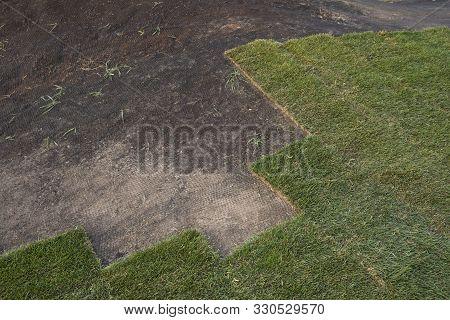 Installing Grass Turf Rolls For New Garden Lawn.