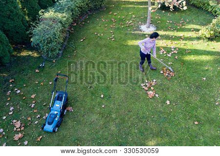 Aerial Image Of Woman Taking Care Of Lawn In Autumn, Raking Leaves And Mowing Grass