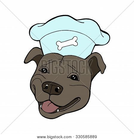 Pit Bull Terrier In A Chefs Cap. Vector Illustration. Vector Logo Pure-bred