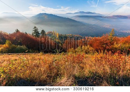 Foggy Morning In Carpathian Mountains. Amazing Nature Landscape In Fall Season. Forest In Red And Or
