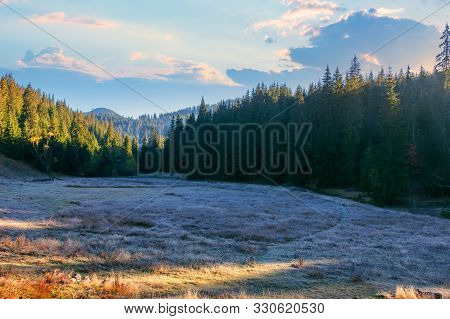 Wonderful Mountain Landscape At Sunrise In Autumn. Grassy Meadow Among The Spruce Forest. Frosty And