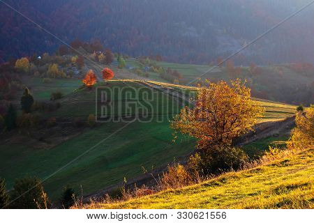 Rural Landscape At Sunrise. Beautiful Autumn Scenery In Mountains. Trees In Fall Foliage On Rolling