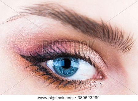 Woman Eyes With Beautiful Makeup. Closeup Eyebrow And Blue Eye. Woman With Soft Smooth Healthy Skin