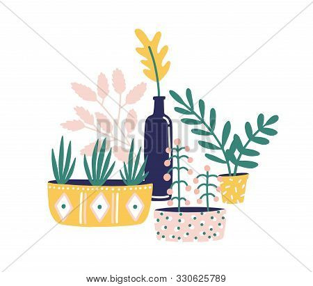 Potted Houseplants Flat Vector Illustration. Succulents, Flowers And Green Herbs For Home Decoration