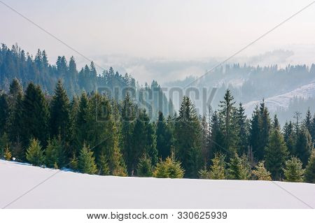 Forest On The Snow Covered Slope. Beautiful Mountain Landscape In Winter. Misty Morning. Distant Hil